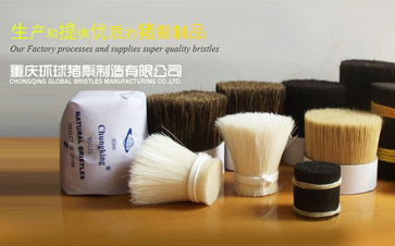 Exhibitor Recommendation: Chongqing Global Bristles Manufacturing Co., Ltd. (Booth No.N5B01)